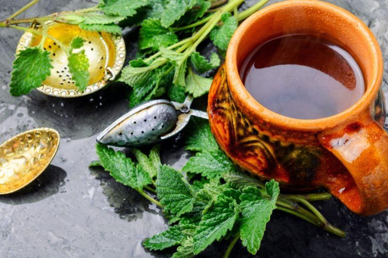 čaj za mršavljenje matičnjak